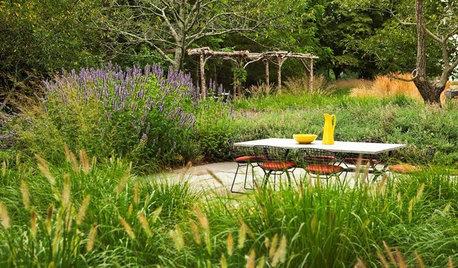 24 Tipps für einen pflegeleichten Garten