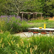 Contemporary Landscape by Oehme, van Sweden Landscape Architecture