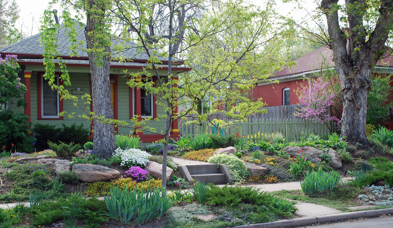 8 gainesville landscape design ideas for parking strips