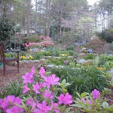 Traditional Landscape by Home & Garden Design, Atlanta - Danna Cain, ASLA