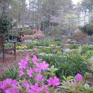 This is an example of a mid-sized traditional full sun front yard landscaping in Atlanta for summer.