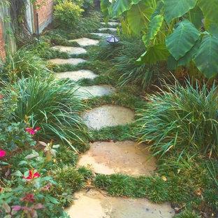 Esempio di un giardino formale tropicale di medie dimensioni e nel cortile laterale con un ingresso o sentiero e pavimentazioni in pietra naturale