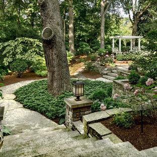シカゴの大きい、夏のトラディショナルスタイルのおしゃれな庭 (庭への小道、日陰、天然石敷き) の写真