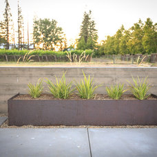 Contemporary Landscape by Envision Landscape Studio