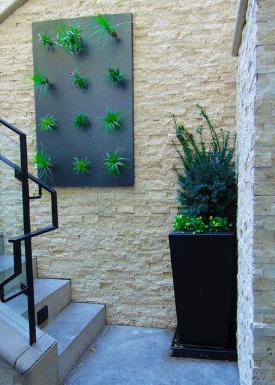 Contemporain Jardin by Dorthy Pautz Landscape Architect
