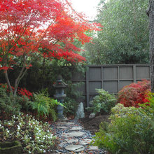 Lay of the Landscape: Japanese Garden Design