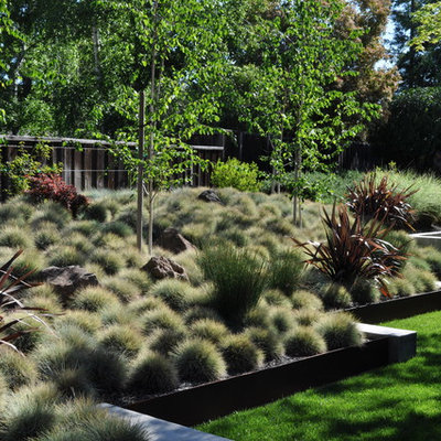 Photo of a modern retaining wall landscape in San Francisco.