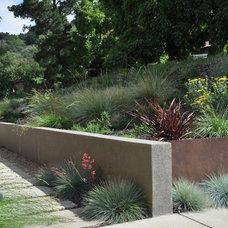 Modern Landscape by Huettl Landscape Architecture