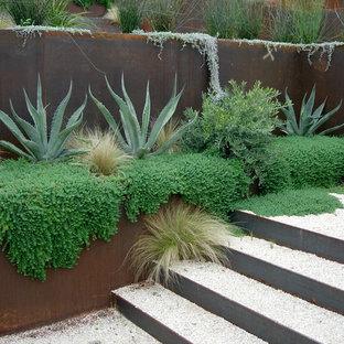 Immagine di un giardino moderno con un muro di contenimento