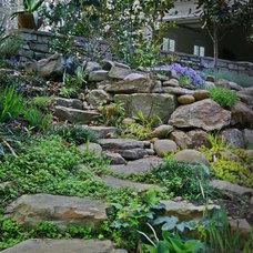 Landscape by Edward Davis Landscape Architect