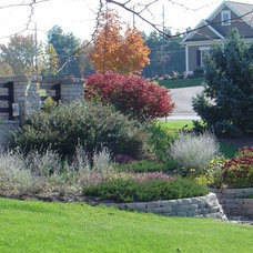 Traditional Landscape by Designscape Horticultural Services