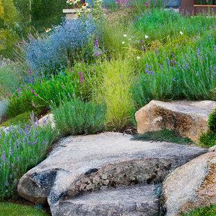 Aménagement d'un jardin classique avec une pente, une colline ou un talus et pierres et graviers.