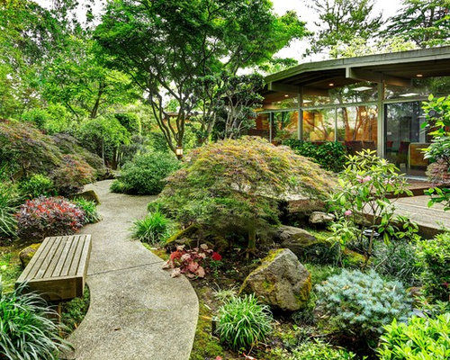 Japanese maple garden home design ideas pictures remodel for Garden design with japanese maple