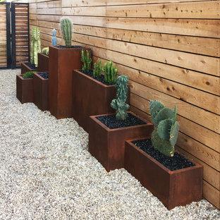 Inspiration för mellanstora amerikanska trädgårdar i delvis sol som tål torka, längs med huset och ökenträdgård på vinteren, med grus