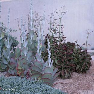 Inspiration för klassiska trädgårdar