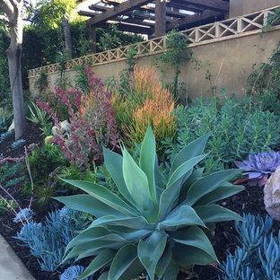 This is an example of a southwestern landscaping in San Diego.
