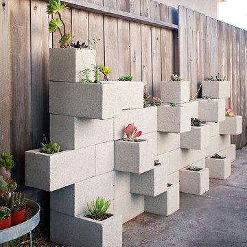 Succulent Planter Wall
