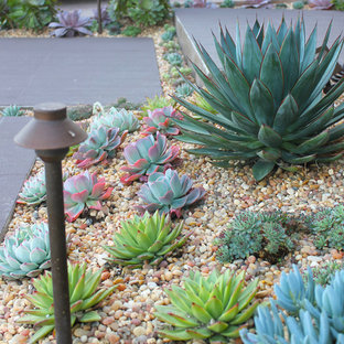 This is an example of a mid-sized transitional drought-tolerant and partial sun front yard gravel landscaping in Orange County.