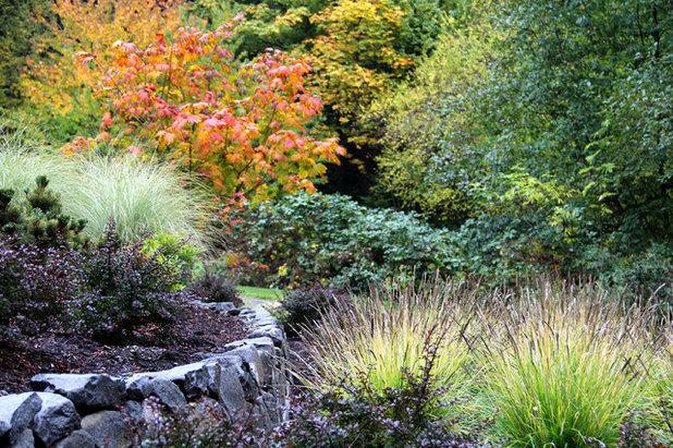 Contemporary Garden by Bliss Garden Design, LLC