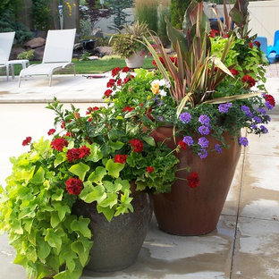Photo of a small eclectic full sun courtyard landscaping in Boise for summer.