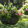 Throwing Shade: 14 Container Gardens for Low-Sun Spots