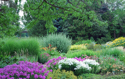 Take Your Garden on a Rural Route With Plant-Dominant Designs