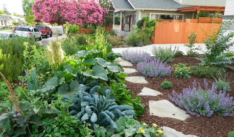 10 Ways to Make Your Garden More Productive