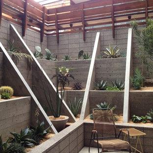 Design ideas for a modern hillside landscaping in San Francisco.