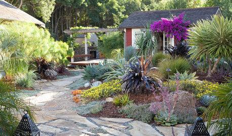 Jardines: Cómo lograr un espacio de diseño con el mínimo mantenimiento