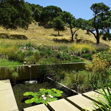 Sunol Landscape