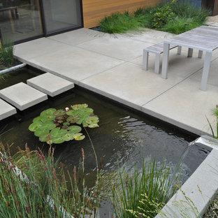 Foto di un giardino design con fontane