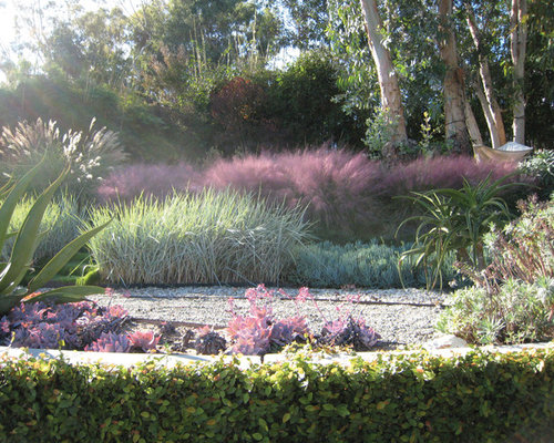 Pink muhly grass home design ideas pictures remodel and for Modern grasses landscaping