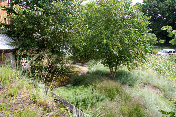 How to stop worrying and start loving clay soil for Jonathan alderson landscape architects