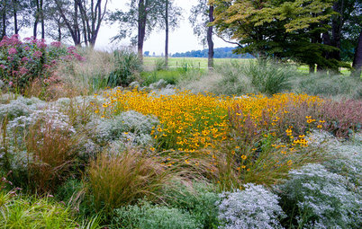 Design a Beautiful Fall Garden That Pollinators Will Love