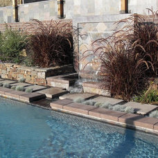 Modern Pool by Alder Group, Pool and Landscape Co.