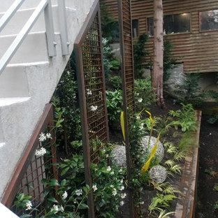 Idee per un giardino xeriscape contemporaneo in ombra nel cortile laterale in inverno con un ingresso o sentiero