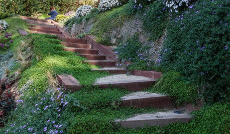 Pregunta al experto: 9 formas de contener desniveles en jardines
