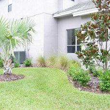 Contemporary Landscape by Tampa Landscape Design