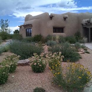 Foto di un giardino xeriscape stile americano esposto in pieno sole davanti casa in estate con un ingresso o sentiero e ghiaia