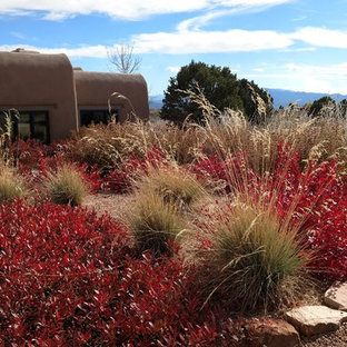 Photo of a southwestern drought-tolerant and full sun front yard gravel garden path in Albuquerque for summer.
