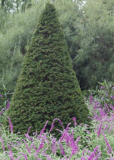 Jardin by CYAN Horticulture