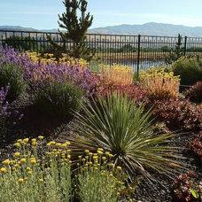 Contemporary Landscape by The Garden Artist LLC