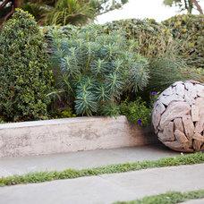 Modern Landscape by Katharine Webster MLA, INC.