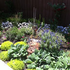 Texas Butterfly Garden Organic Xeriscaping Traditional