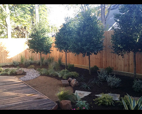 Backyard Ideas Texas texas sage russian sage mexican feather grass butterfly bushes and mulch Saveemail