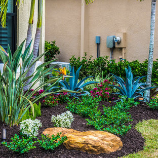 75 Most Popular Tropical Front Yard Garden Design Ideas ... on Tropical Landscaping Ideas For Small Yards id=21015
