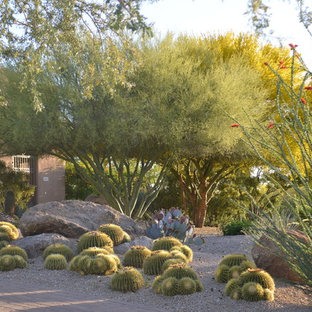 Photo of a large southwestern front yard concrete paver landscaping in Phoenix.