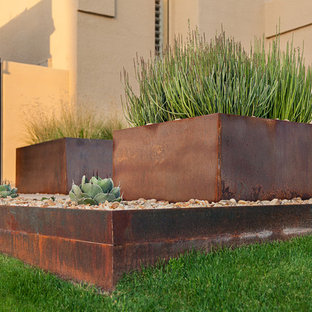 Photo of a mid-sized modern full sun front yard formal garden in Phoenix.