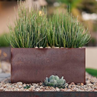 Design ideas for a mid-sized modern full sun front yard landscaping in Phoenix.