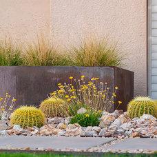 Modern Landscape by Coffman Studio